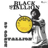 Black Stallion - Stallion (Extended) (Hornin' Sounds) 12""